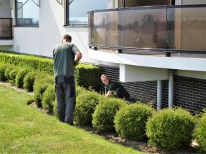 Onderhoud, seniorencomplexen Papendrecht